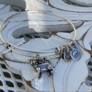 Alex & Ani Kitty Cat Silver Tone Bracelet